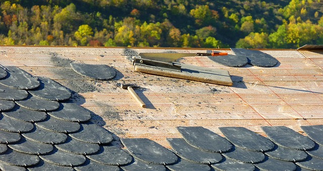 3 THINGS TO CHECK BEFORE A ROOFING MAINTENANCE PROJECT